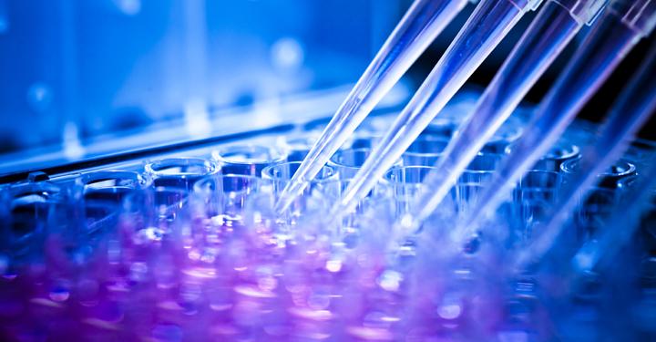 Un passo avanti nella ricerca sulla malattia di Pompe