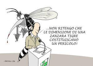 Piccole zanzare crescono
