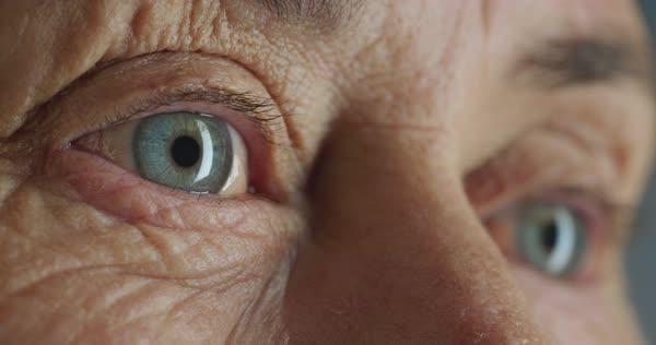 Eye Nutrition: la nutraceutica che aiuta la retina